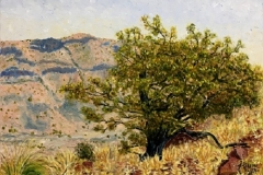 High Meadow Oak-Big Bend Country, 2017, oil, 18 x 24 in. [09]