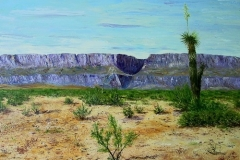 Santa Elena Canyon, 2007, oil, 18 x 24 in. [20]