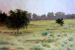 Penick Farm at Smithville, 2002, oil, 24 x 30 in. [10] NA